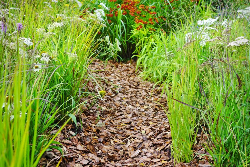 couverture organique fleur