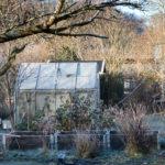 protéger votre jardin pour l'hiver