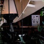 Intérieur escalier avec plantes