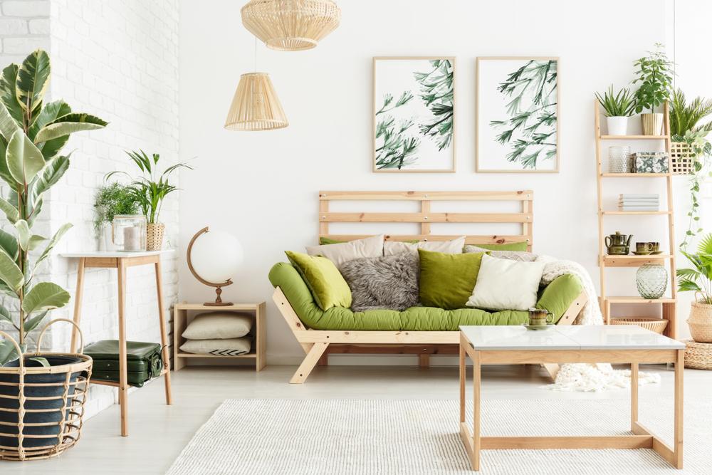Salon Feng Shui avec plantes