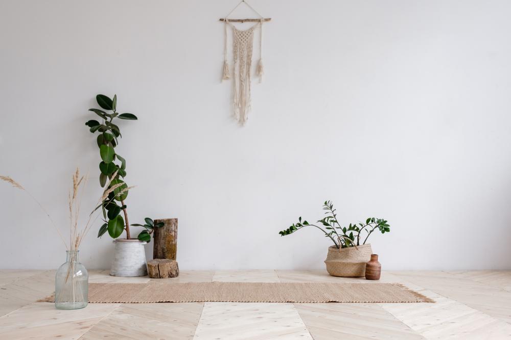 Espace zen avec plantes vertes pour yoga et méditation