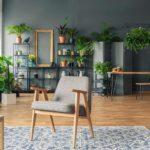 Un salon décoré avec des plantes vertes