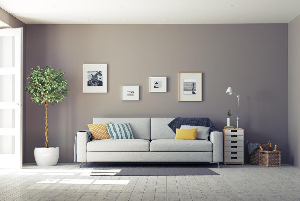 Salon avec mur de couleur gris coloré